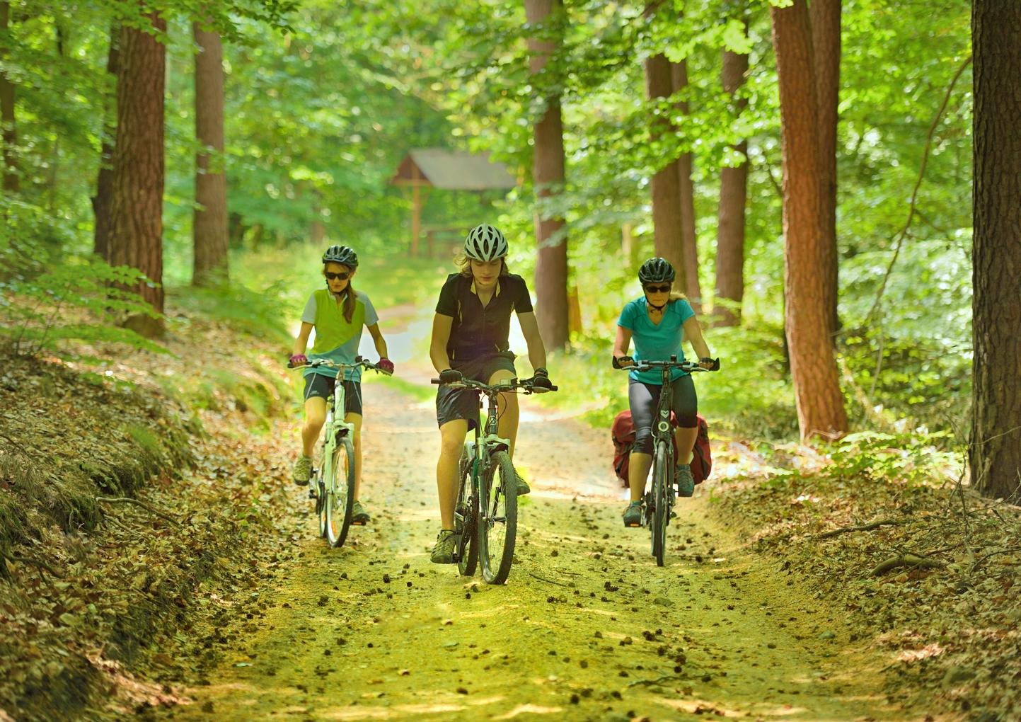 Barlinecko-Gorzowski park krajobrazowy fot. Piotr Chara